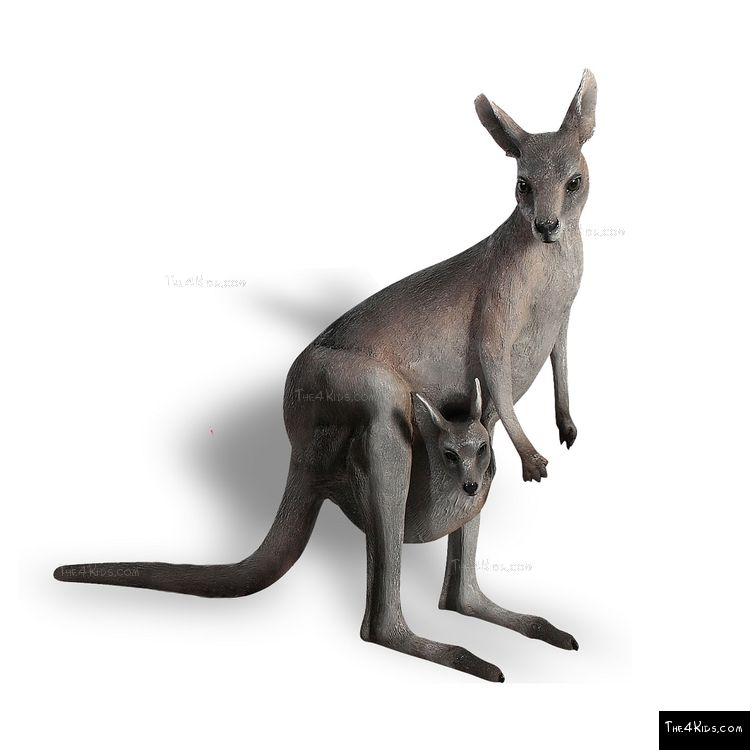 Image of 3ft Kangaroo with Joey