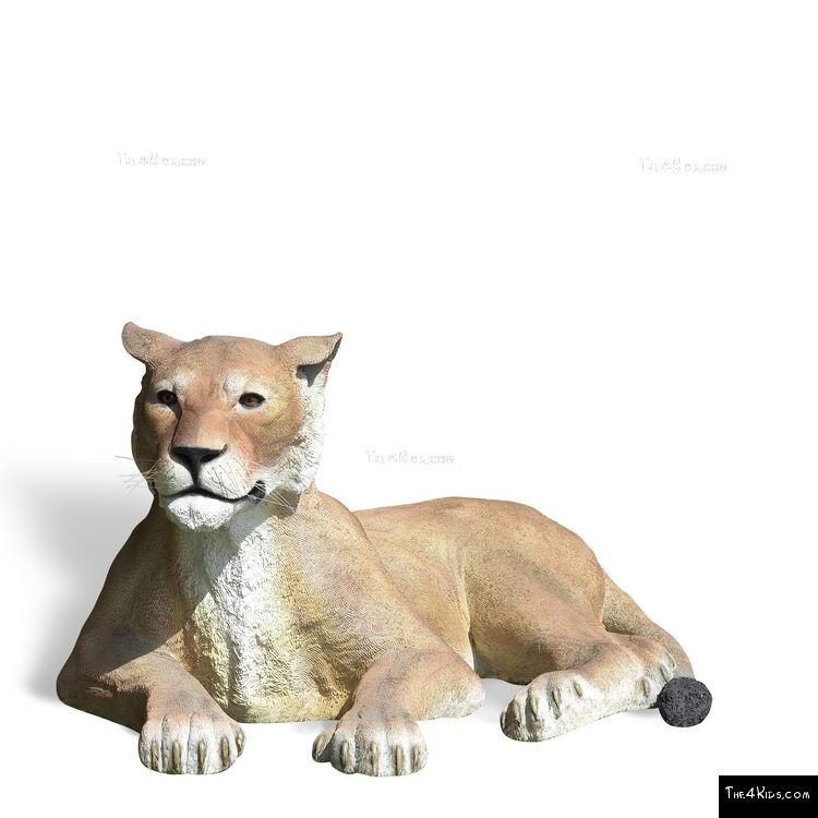 Image of Lying Lioness