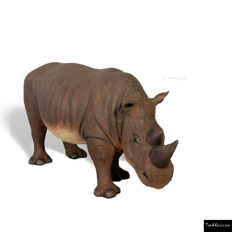 Image of Rhinoceros Baby