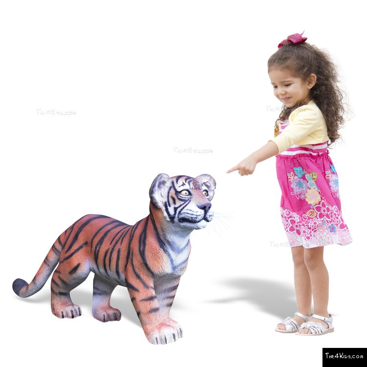 Image of Tiger Cub Standing