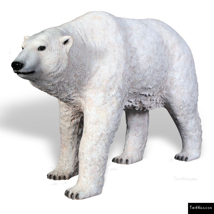 Image of Polar Bear Walking