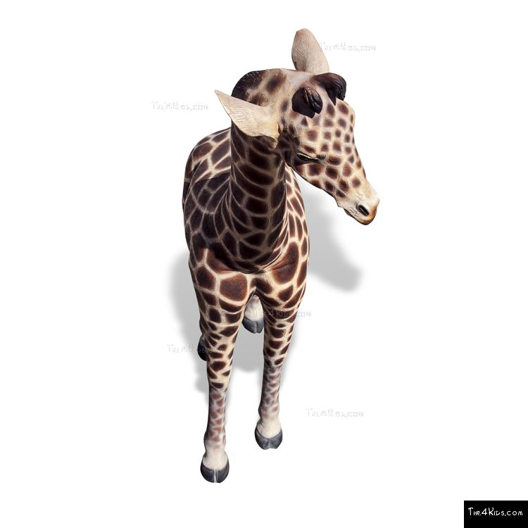 Image of 6ft Baby Giraffe
