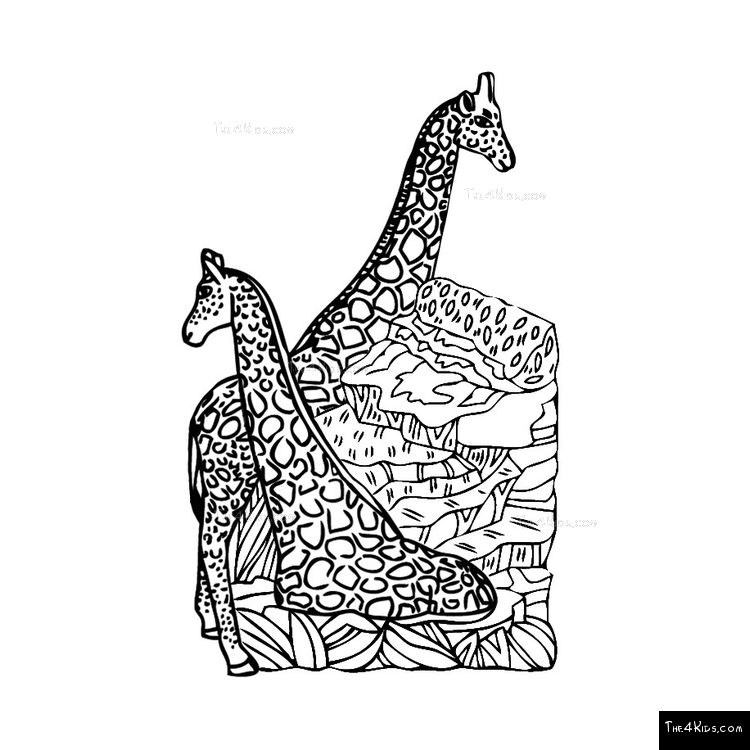 Image of Giraffe Climber