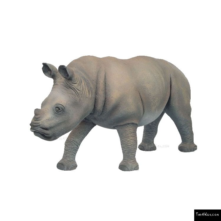 Image of Rhinoceros and Baby