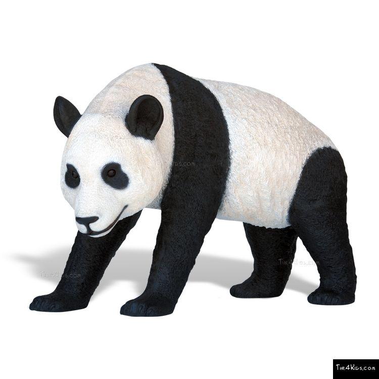 Image of Panda Walking