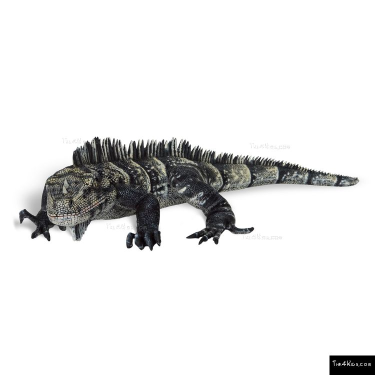 Image of Black and White Iguana Sculpture