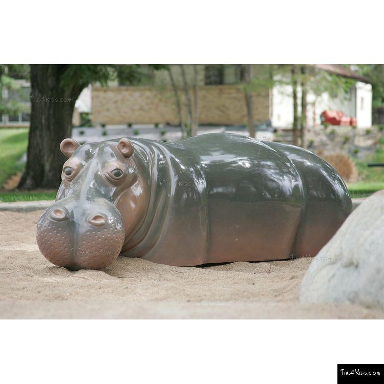 Image of Sunken Hippo