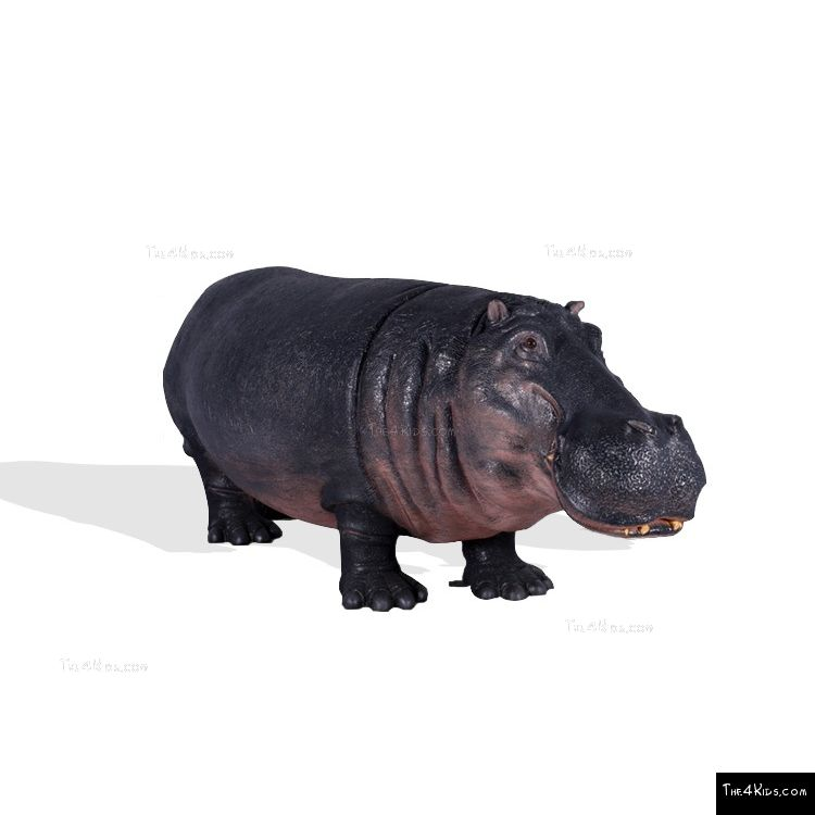 Image of Large Hippopotamus