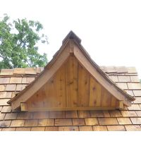 Tree House Roof Dormer