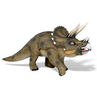 Young Triceratops Sculpture