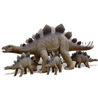 Thumbnail of Adult Stegosaurus