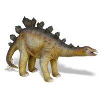 Thumbnail for Baby Stegosaurus
