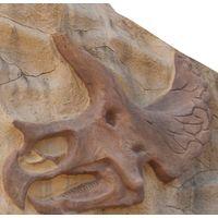 Thumbnail of Triceratops Bones Climber