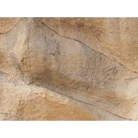 Thumbnail of Plesiosaurus Climber