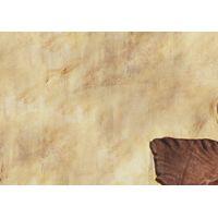 Thumbnail of Dragon Head Fossil Dig