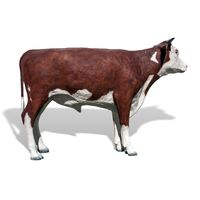 Thumbnail of Hereford Steer Play Sculpture