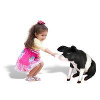 Thumbnail of Farm Piglet