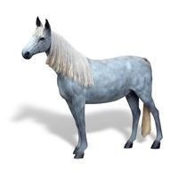 Thumbnail for Appaloosa Horse