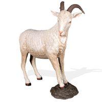 Thumbnail of Mountain Goat on Rock