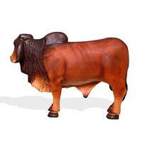 Thumbnail of Small Brahman Bull Red