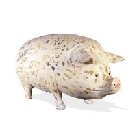 Thumbnail of Spotted Pig