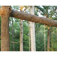 Thumbnail of Single Post Swing Set