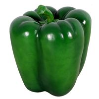 Thumbnail for Small Green Pepper