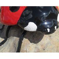 Thumbnail of Ladybug Climber