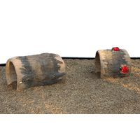 Thumbnail of Ladybug Log Crawler