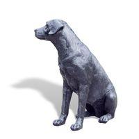 Thumbnail of Labrador Sitting