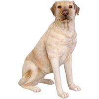 Thumbnail of Labrador Sitting