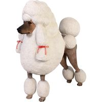 Thumbnail of Poodle