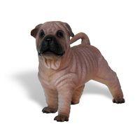 Thumbnail of Shar-Pei Pup