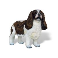 Thumbnail for Cavalier King Spaniel