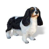 Thumbnail of Cavalier King Spaniel