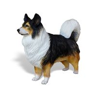 Thumbnail of Australian Shepherd