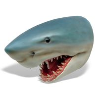 Thumbnail for Great White Shark Head