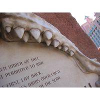 Thumbnail of Giant Shark Jaws Sculpture
