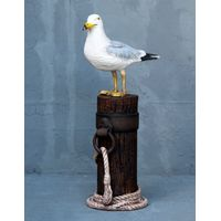 Thumbnail for SEA136 Seagull on Post_NEW3846