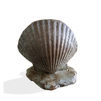Thumbnail of Seashell Steppers