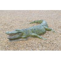 Thumbnail for 8ft American Alligator