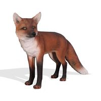 Thumbnail of Red Fox