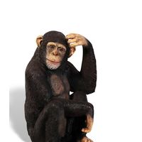 Thumbnail of Chimpanzee