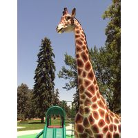Thumbnail of 12ft Giraffe