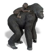 Thumbnail of Gorilla and Baby