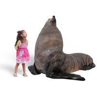 Thumbnail of Fur Seal