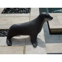 Thumbnail of Baby Fur Seal