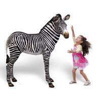 Thumbnail of Zebra Foal