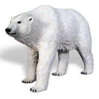 Thumbnail of Polar Bear Walking
