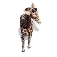 Thumbnail of 6ft Baby Giraffe